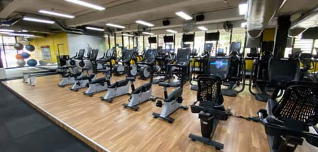 Image of the UNSW Fitness and Aquatic Centre cardio area showing bikes, elliptical trainers and treadmills